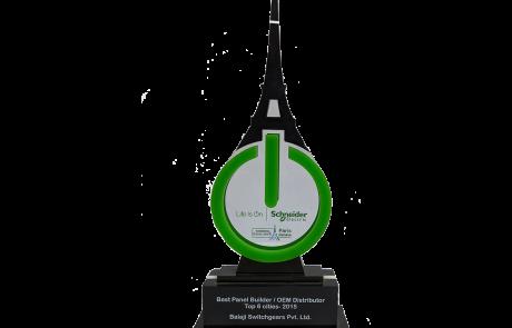 Mirror Groups Award by Schneider Electric, 2016